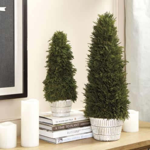 Bunny Williams Preserved Cypress Topiaries
