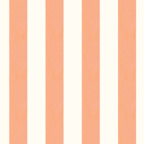 Canopy Stripe Apricot/White Sunbrella® Fabric by the