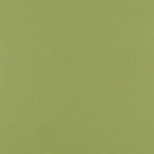 Canvas Kiwi Sunbrella® Fabric by the Yard