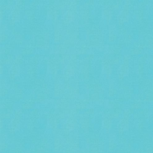 Canvas Turquoise Sunbrella® Fabric by the Yard