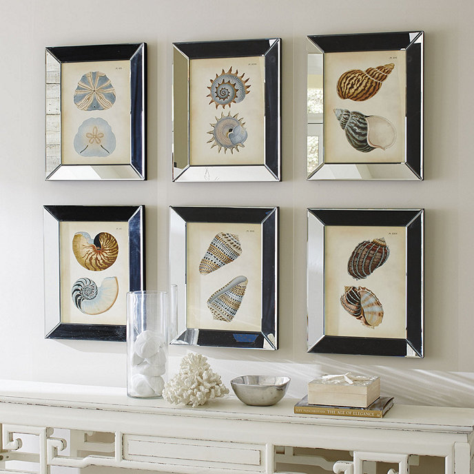 shells in mirror frame art