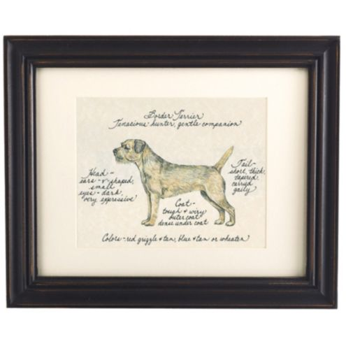 Border Terrier Dog Print