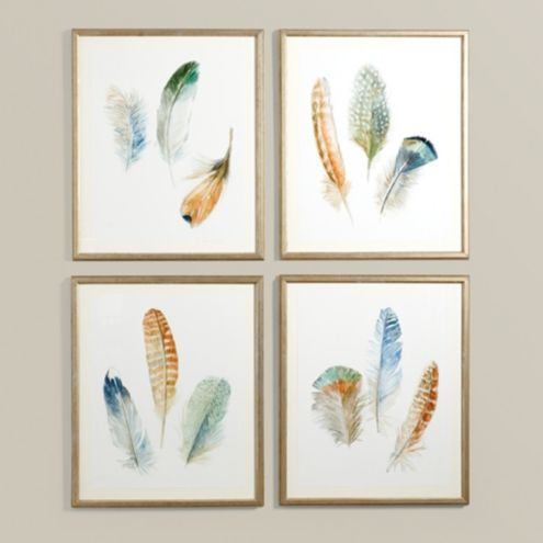 Feather Study Art