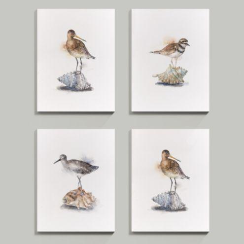 Shorebird and Seashell Art