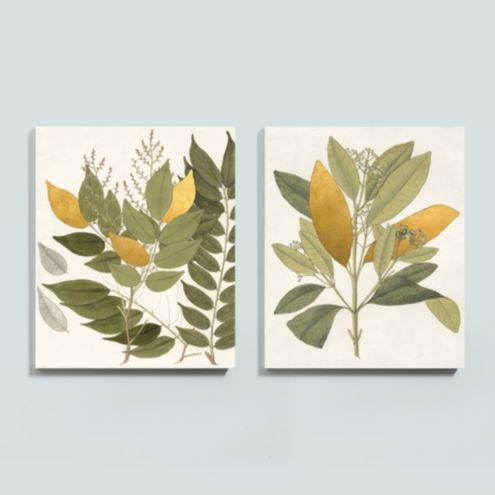 Heines Gilded Leaf Stretched Canvas