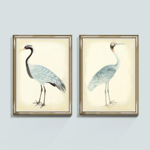 Bunny Williams Bird Frame Print