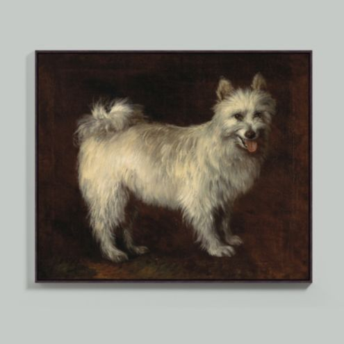 Antique White Dog Framed Canvas
