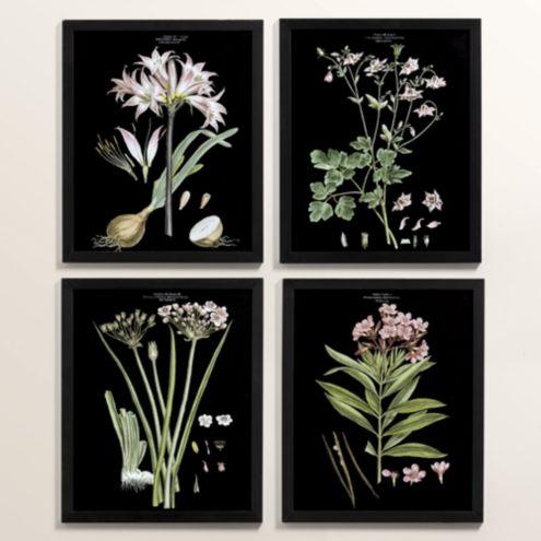 Petite Floral Night Art