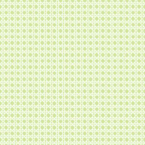 Cane Trellis Wallpaper Green/White Double Roll