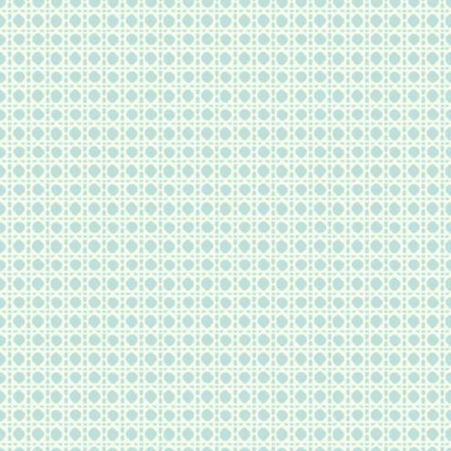 Cane Trellis Wallpaper Spa/White Double Roll