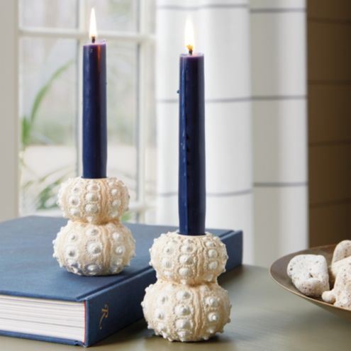 Sea Urchin Taper Candle Holder - Set of