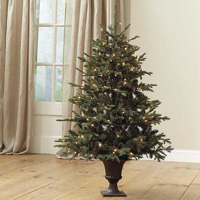 Potted Christmas Trees For Sale: 4' Pre-Lit Potted Frasier Fir Tree