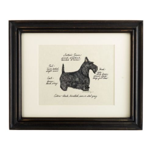 Scottish Terrier Dog Print