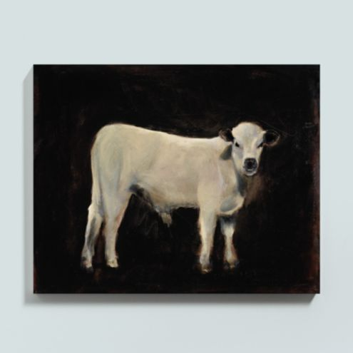 Mango the Cow Stretched Canvas