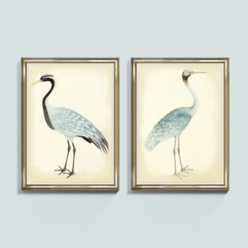 Bunny Williams Bird Frame Print