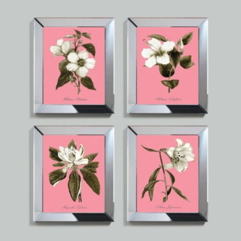 Pink Alabaster Bloom Framed Print
