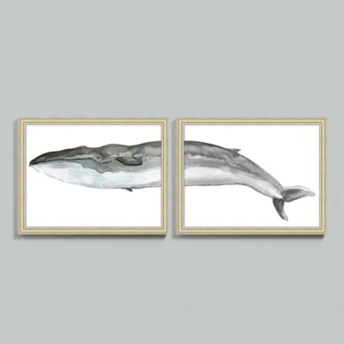Fin Whale Diptych