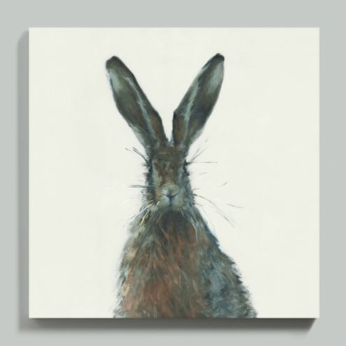 Henri the Hare Stretched Canvas