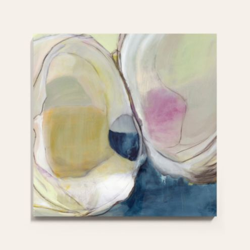 Freshwater Clam Stretched Canvas