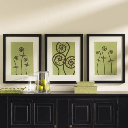 Dichromatic Fiddlehead Fern Prints Ballard Designs
